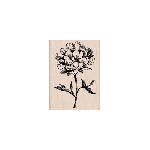 Hero Arts - Woodblock - Wood Mounted Stamps - Classic Tea Flower