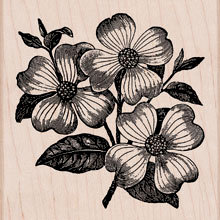 Hero Arts - Woodblock - Wood Mounted Stamps - Dogwood