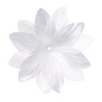 Imaginisce - Now and Forever Collection - Stephanotis Flowers - 2.5 Inch - Flower Shower