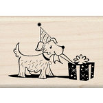 Inkadinkado - Birthday Fun Collection - Wood Mounted Stamps - Doggie Present
