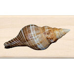 Inkadinkado - Photo Realistic Collection - Wood Mounted Stamps - Shell