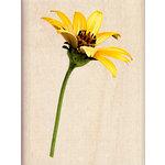 Inkadinkado - Photo Realistic Collection - Wood Mounted Stamps - Sunflower