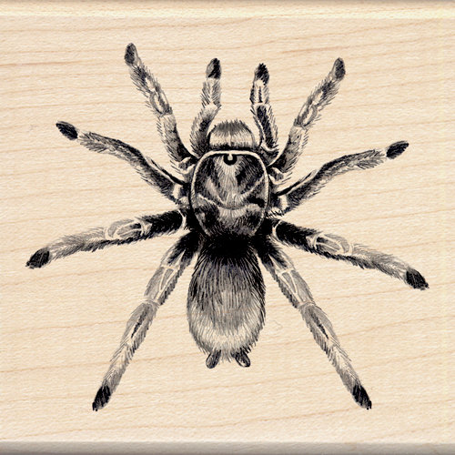 Inkadinkado - Sketches Collection - Halloween - Wood Mounted Stamps - Tarantula