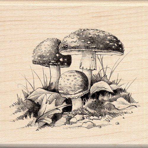 Inkadinkado - Sketches Collection - Halloween - Wood Mounted Stamps - Mushrooms