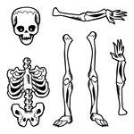 Inkadinkado - Halloween Collection - Clear Acrylic Stamps - Mini Skeleton Closet