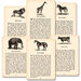 Jenni Bowlin Studio - Vintage Mini Deck - Animal Trivia