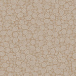 Jillibean Soup - Soup Staples Collection - 12 x 12 Kraft Paper - White Pea Pod