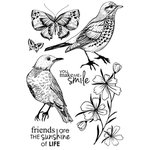 Kaisercraft - Fly Free Collection - Clear Acrylic Stamps