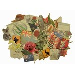 Kaisercraft - Great Southern Land Collection - Collectables - Die Cut Cardstock Pieces