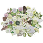 Kaisercraft - Botanica Collection - Collectables - Die Cut Cardstock Pieces
