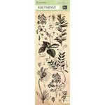 K and Company - Flora and Fauna Collection - Rub Ons with Gem Accents - Natural