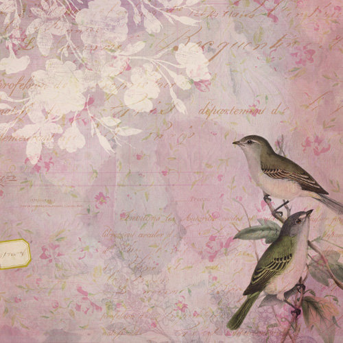 K and Company - Flora and Fauna Collection - 12 x 12 Paper - Lovebirds