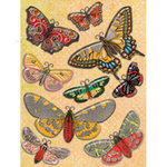K and Company - Que Sera Sera Collection - Grand Adhesions Stickers - Butterfly