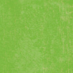 K and Company - 12x12 Paper - Girl Scouts Collection - Green Texture, CLEARANCE