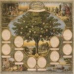 K and Company - Ancestry.com Collection - 12x12 Paper - Traditional Family Tree