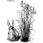 LaBlanche - Spring Collection - Foam Mounted Silicone Stamp - Bunny with Flowers