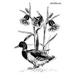 LaBlanche - Foam Mounted Silicone Stamp - Walking Duck