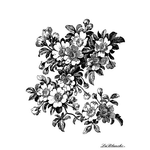 LaBlanche - Foam Mounted Silicone Stamp - Apple Blossom