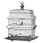 LaBlanche - Foam Mounted Silicone Stamp - Wire Bird Cage