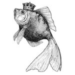 LaBlanche - Foam Mounted Silicone Stamp - Goldfish Royalty