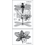 LaBlanche - Foam Mounted Silicone Stamp - Dragonflies