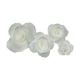 Little B - Paper Flower - Petal Kits - White Carnation