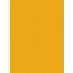 My Colors Cardstock - My Mind's Eye - 8.5 x 11 Heavyweight Cardstock - Lemon Sorbet