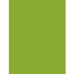 My Colors Cardstock - My Mind's Eye - 8.5 x 11 Heavyweight Cardstock - Crisp Green