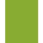 My Colors Cardstock - My Mind's Eye - 8.5 x 11 Heavyweight Cardstock - Crisp Green