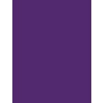 My Colors Cardstock - My Mind's Eye - 8.5 x 11 Heavyweight Cardstock - Cyber Grape