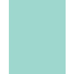 My Colors Cardstock - My Mind's Eye - 8.5 x 11 Heavyweight Cardstock - Pale Aqua