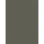 My Colors Cardstock - My Mind's Eye - 8.5 x 11 Heavyweight Cardstock - Battleship Gray