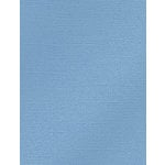 My Colors Cardstock - My Mind's Eye - 8.5 x 11 Glimmer Cardstock - Soft Blue