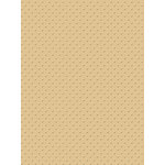 My Colors Cardstock - My Mind's Eye - 8.5 x 11 Mini Dots Cardstock - Cotton Grass