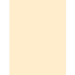 My Colors Cardstock - My Mind's Eye - 8.5 x 11 Classic Cardstock - Ivory
