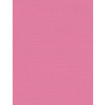 My Colors Cardstock - My Mind's Eye - 8.5 x 11 Canvas Cardstock - Pink Punch