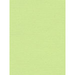 My Colors Cardstock - My Mind's Eye - 8.5 x 11 Canvas Cardstock - Lime Pop