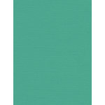 My Colors Cardstock - My Mind's Eye - 8.5 x 11 Canvas Cardstock - Seafoam