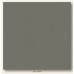 My Colors Cardstock - My Mind's Eye - 12 x 12 Heavyweight Cardstock - Slate
