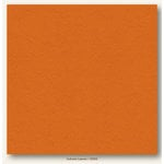 My Colors Cardstock - My Mind's Eye - 12 x 12 Heavyweight Cardstock - Autumn Leaves