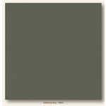 My Colors Cardstock - My Mind's Eye - 12 x 12 Heavyweight Cardstock - Battleship Gray
