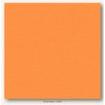 My Colors Cardstock - My Mind's Eye - 12 x 12 Canvas Cardstock - Sweet Potato