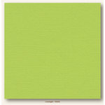 My Colors Cardstock - My Mind's Eye - 12 x 12 Canvas Cardstock - Limelight