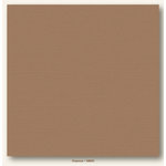 My Colors Cardstock - My Mind's Eye - 12 x 12 Canvas Cardstock - Chamois