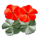 Maya Road - Trinket Blossoms Collection - Velvet Jewel Flower - Orange And Green