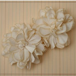 Maya Road - Vintage Edge Mums - Cream