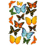 Martha Stewart Crafts - 3 Dimensional Stickers with Glitter Accents - Butterfly, CLEARANCE