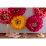 Martha Stewart Crafts - Pom Pom Kit - Poppy Flowers