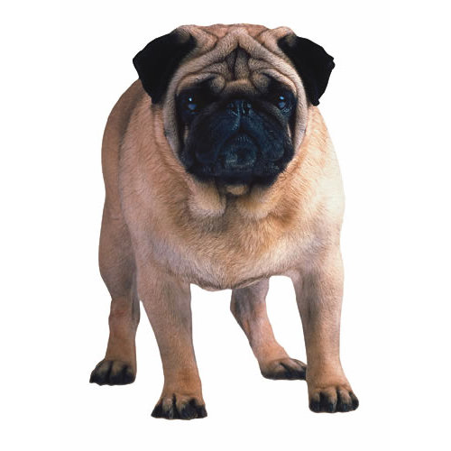 Paper House Productions - Dog Collection - Mini Die Cut Piece - Pug
