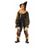 Paper House Productions - Wizard of Oz Collection - Mini Die Cut Piece - Scarecrow, BRAND NEW